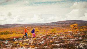 Egenlandin juontajat Nicke Aldén ja Hannamari Hoikkala kävelevät tunturimaastossa.