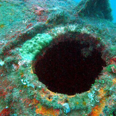 Saksalaishylky Jaavanmerellä