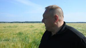david köping tittar ut över sin åker.