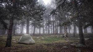 Peter Jofs slog upp sitt tält i skogen.