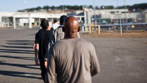 miehiä jonossa kävelemässä kohti vankilaa, kuvattuna selän takaa.
