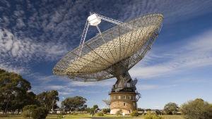 Parkesin radioteleskooppi Australiassa.