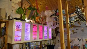 Drakar som hänger ur taket som en hög och skåp bredvid varandra, upplyfta i pink och lila som innehåller bland annat snäckor.