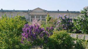 Compiègnen keisarillinen palatsi, le Palais impérial Compiègnessä, Ranskassa.
