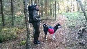 Anders Myntti går i skogen med sin hund.