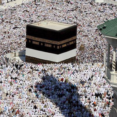 Muslimer knäböjer mot Mekka.