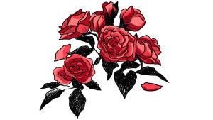 Kuvituskuva: ruusuja