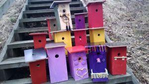 koristeltuja linnunpönttöjä