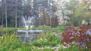 Parken vid Vasa stadssjukhus.