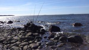 Tre spön på stranden i väntan på att siken ska nappa
