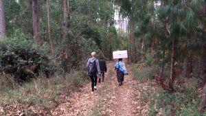 En moderskapsförpackning bärs genom djungeln.