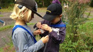 två barn samlar höstdofter på burk