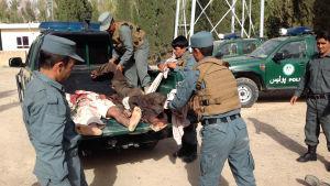 Hundratals talibaner, soldater och poliser har dödats i år i upptrappade strider i Farah