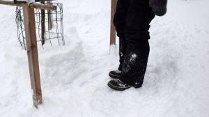 Kängor på tilltrampad snö en meter ifrån ett äppelträd
