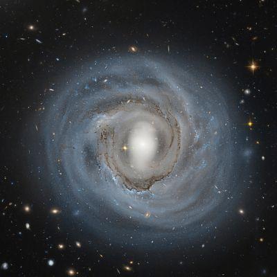 Hubble-avaruusteleskoopin kuva 310 miljoonan valovuoden päässä sijaitsevasta NGC 4921 -galaksista.