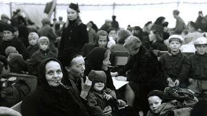 Evakuerade har kommit till Sverige, Lapplandskriget