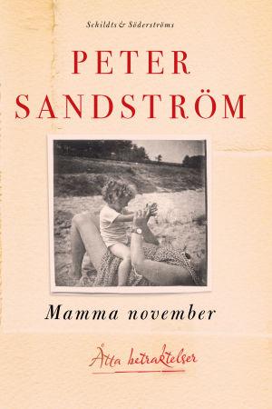 Pärmen till Peter Sandströms Mamma november.
