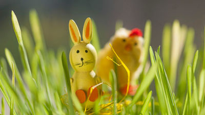 En gul påskgare och en kyckling i påskgräs