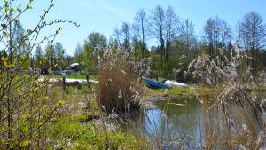 Flera båtar ligger uppdragna på en gräsmatta.