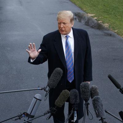 Donald Trump talar med den samlade presskåren under ett besök vid USA:s södra gräns.