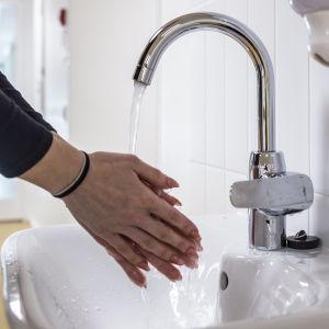 Händer tvättas under rinnande vatten vid en lavoar.