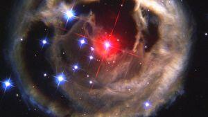 V838 Monocerotis, en röd stjärna i Enhörningens stjärnbild. Den känns igen på det ljuseko som den omges av.