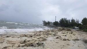 Tom strand på Nassau, Bahamas inför orkanen Dorian.