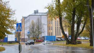 En gulvit byggnad i regnet. På väggen står det Lovia gymnasium. Två bilar kör förbi på gatan och man ser att vattnet strittar.