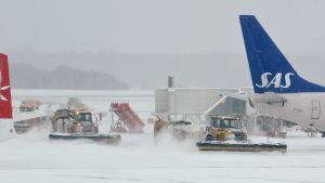 Plogbilar på Arlanda flygplats.