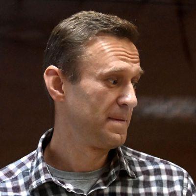 Det här fotot på den ryske regimkritikern Aleksej Navalnyj togs i samband med rättegången mot honom den 20 februari.