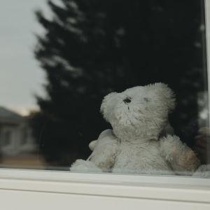 En vit lurvig nallebjörn sitter bakom ett fönster.