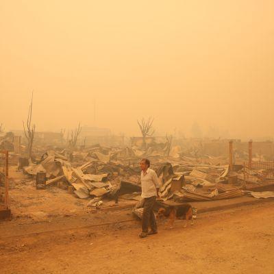 Santa Olgan pikkukaupunki tuhoutui maastopaloissa Chilessä täysin. Mies käveli raunioiden keskellä torstaina 26. tammikuuta 2017.