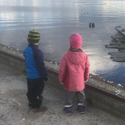 Två barn tittar ut över Tallinnbukten med Tallinns siluett i horisonten
