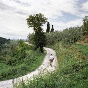 Maisema Toscanassa