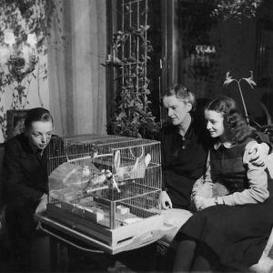 Katarina Ilves sekä lapset Jan ja Merike 1940-luvulla.