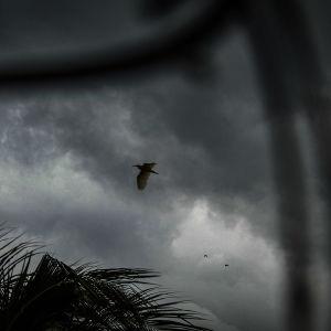 Synkkä myrskytaivas.