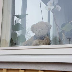 En nalle i ett fönster i Björkhagen i Pargas.