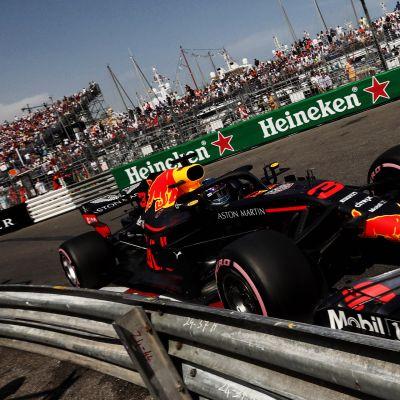 Daniel Ricciardo hymyilee.