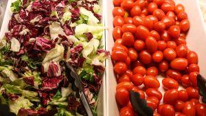 tomater och sallad