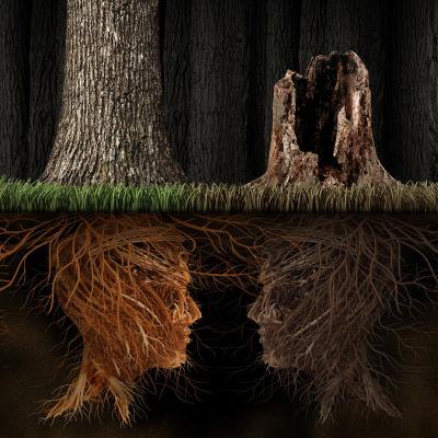 Kaksi puuta, joiden juuret muodostavat kasvot maan alla.