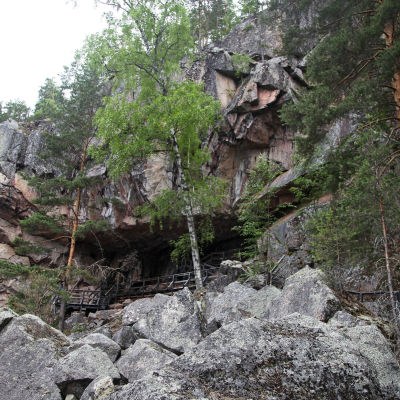 Yhdeksänosainen uusi sarja Metsien kätkemä vie katsojat suomalaiseen luontoon kokemaan kauniita, vaikuttavia ja mielikuvitusta kutkuttavia paikkoja.