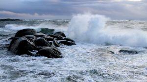 Stora vågor slår vitt skum mot klippor på Utö.