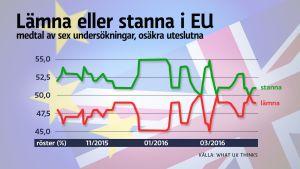 Läget inför folkomröstningen om EU-medlemskap