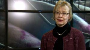 Eviran Elintarviketurvallisuusosaston johtaja Leena Räsänen