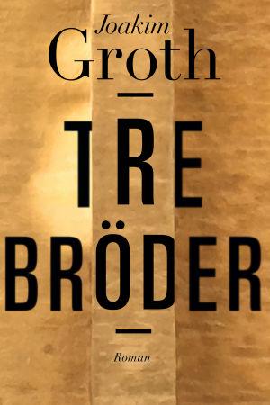 Pärmen till Joakim Groths roman Tre bröder.