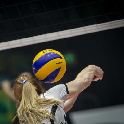 Volleyboll