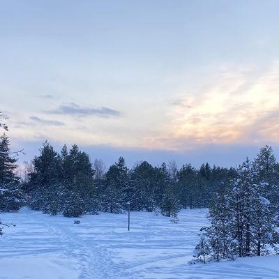 Kuvassa luminen luonto ja hiihtolatu