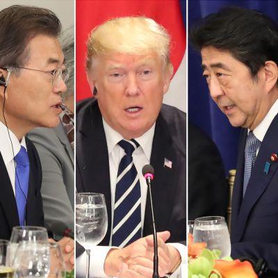 Japans premiärminister Shinzo Abe (till höger) stöder Trumps hotfulla uttalanden medan Sydkoreas president Moon Jae-In (till vänster) är kritisk