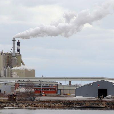 Stora Enson Veitsiluodon tehdas. Sellutehtaan piipuista tupruaa savua, etualalla näkyy vesialue.