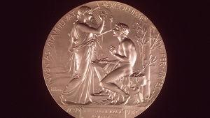 Kirjallisuuden Nobel-mitali.Kirjallisuuden NOBEL-palkinto. Nobelin kirjallisuuspalkinto, jonka F E Sillanpää sai vuonna 1939.